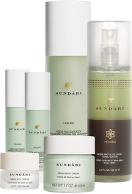 Sundari Created By A Former Model Christy Turlington Is Translated As