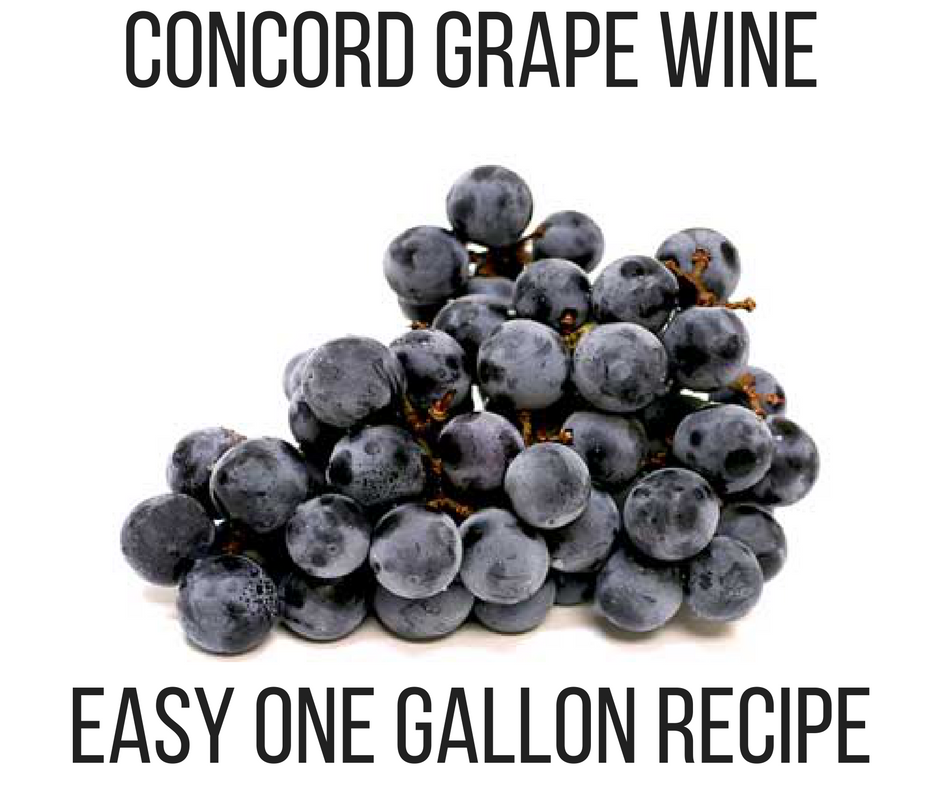 CONCORD GRAPE WINE.png