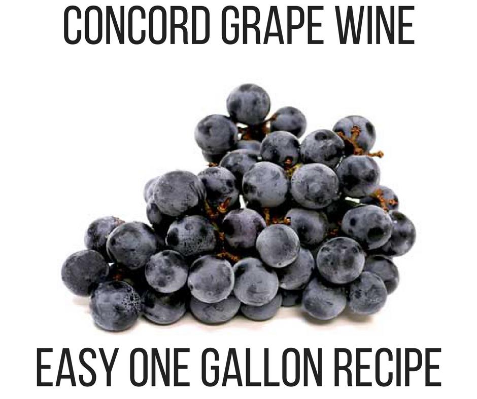 CONCORD GRAPE WINE.png