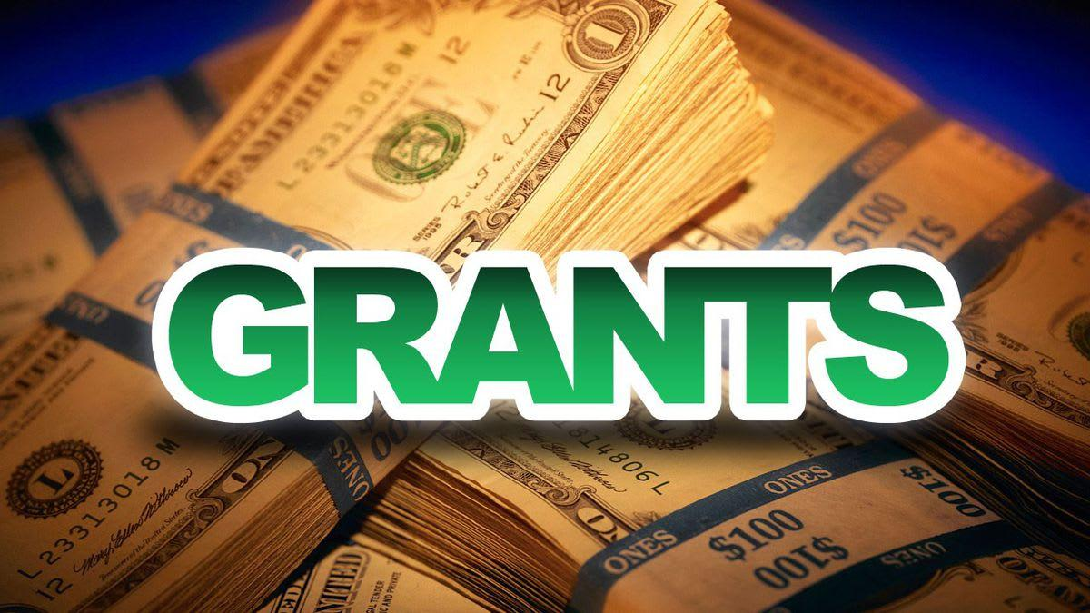 Write a winning grant proposal for you by Archiewhite1 | Fiverr