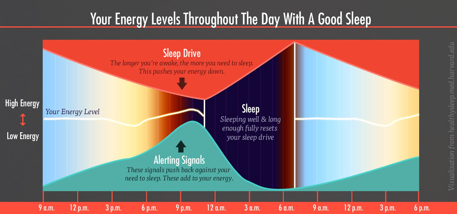 http://bonytobombshell.com/wp-content/uploads/2015/05/energy-levels-sleep-drive-alert-chart-1-bony-bombshell.jpg
