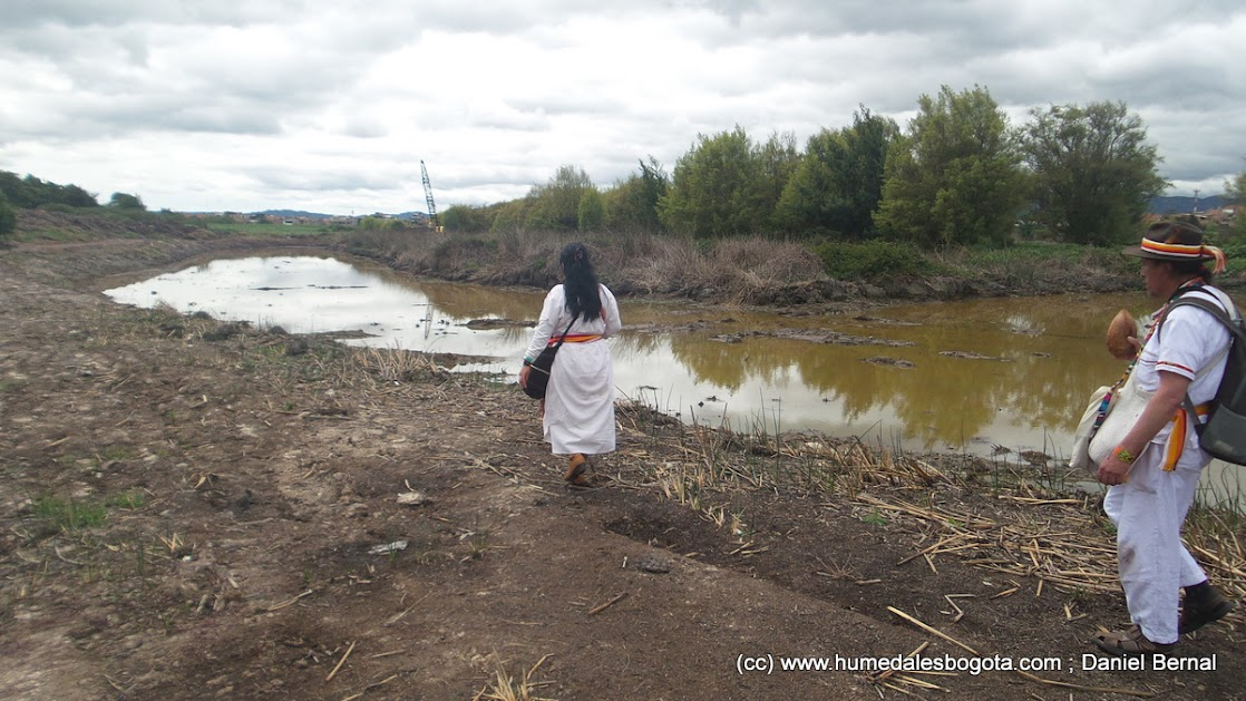 Humedal Nuevo Tibabuyes