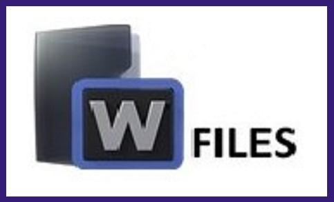 WipFiles logo