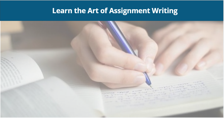 Learn the art of assignment writting