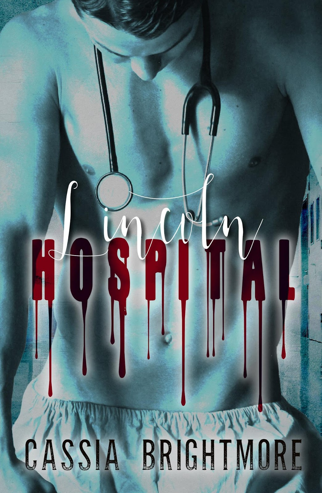 Lincoln Hospital Ebook.jpg