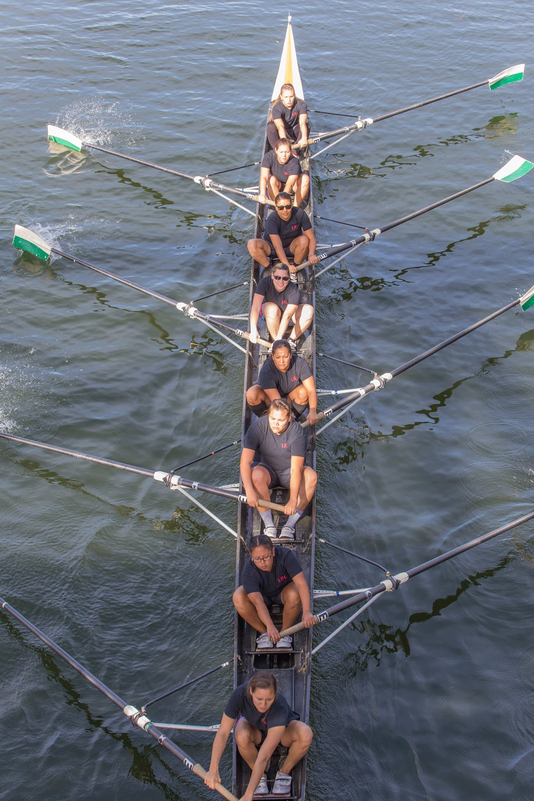 The team as seen from a bridge as they compete in a sport not known for it's diversity. Photo: Alex Hamer