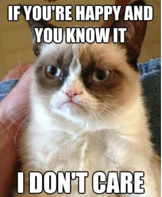 best-funniest-grumpy-cat-4.jpg