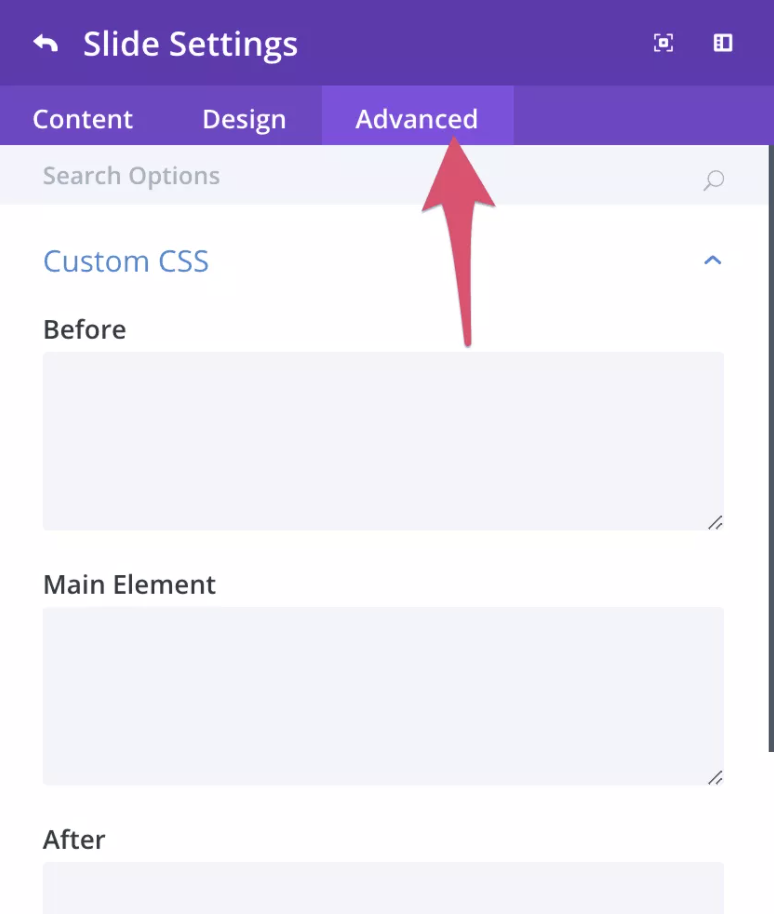 Divi builder- advanced customization