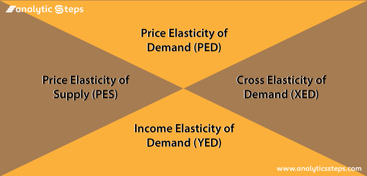 Image showing 4 types of elasticity which are price elasticity of demand, price elasticity of supply, cross elasticity of demand and income elasticity of demand.