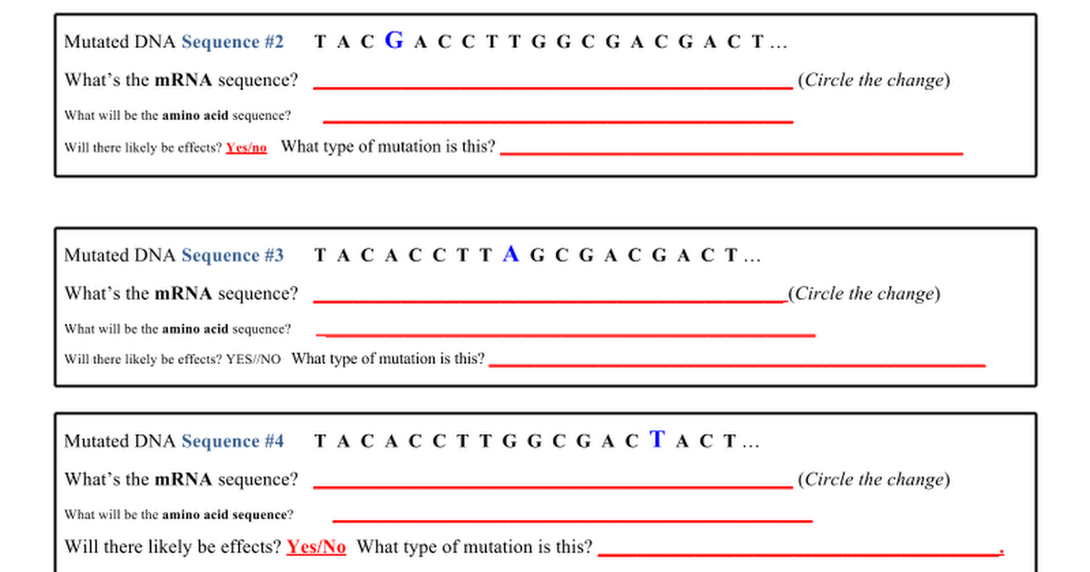 Point Mutations Worksheet - Google Docs