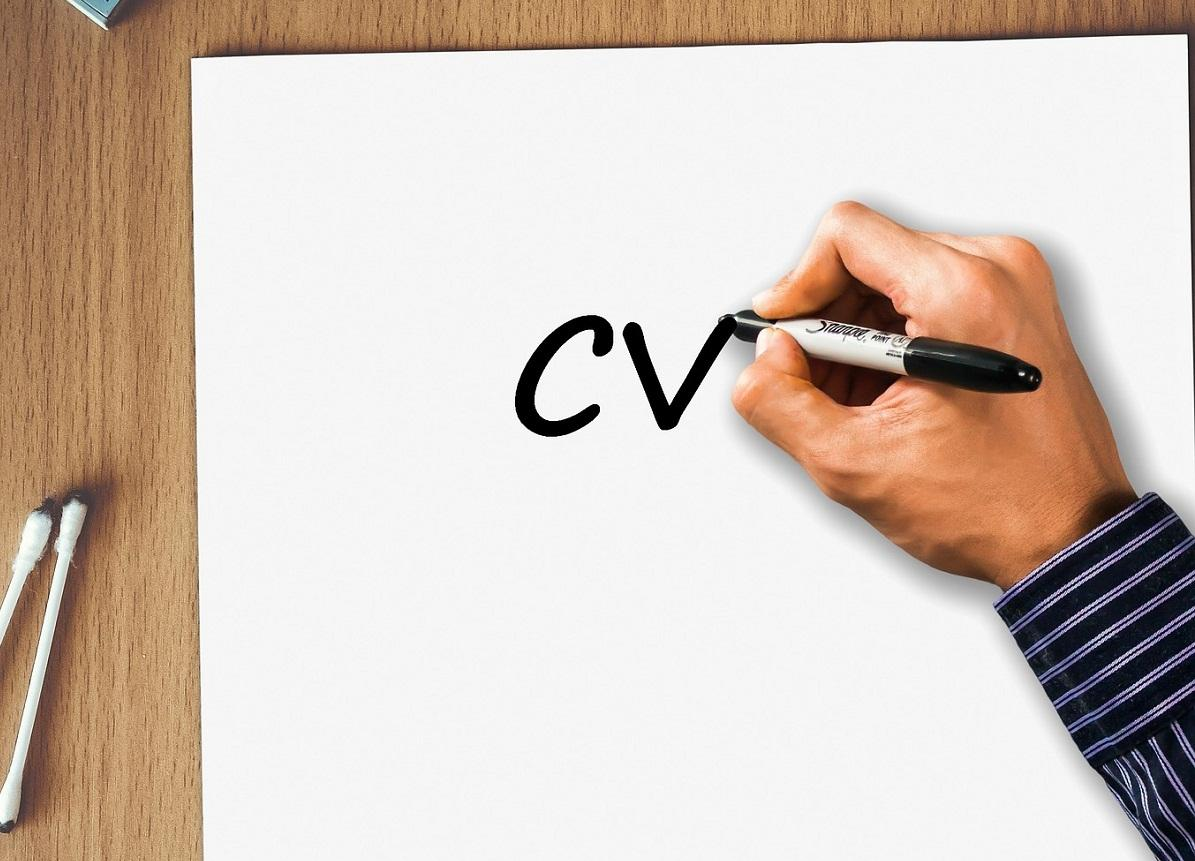 Professional CV/Resume Writing Services