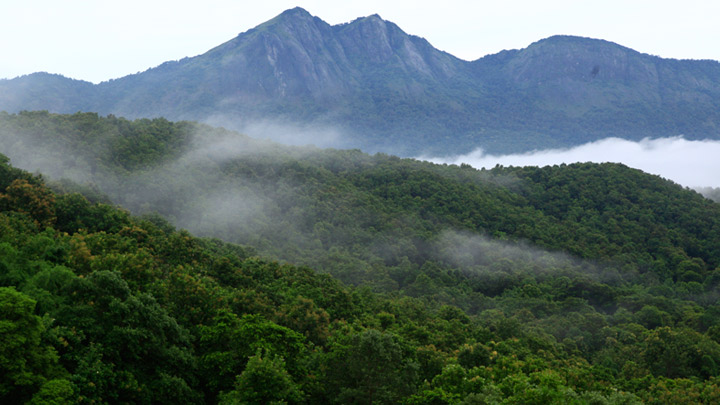 Silent valley national park