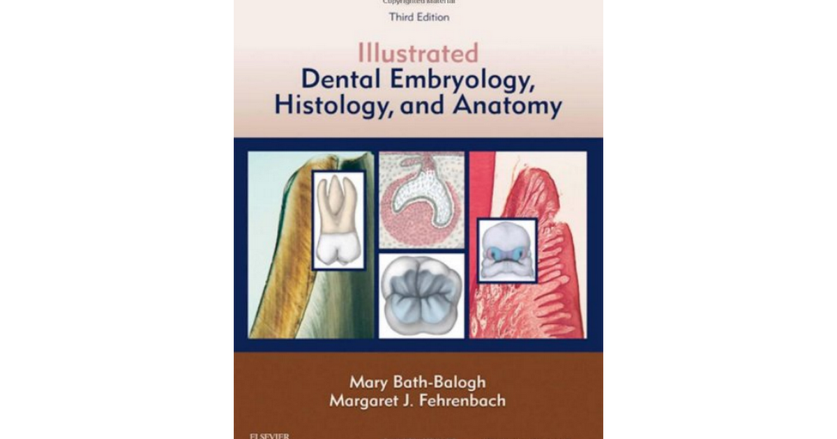 1437717306-Illustrated-Dental-Embryology-Histology-Anatomy.pdf ...