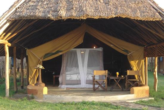 http://www.sikunjema.com/images/flamingohillcamp/Flamingo%20Hill%20Camp%20Tent.jpg