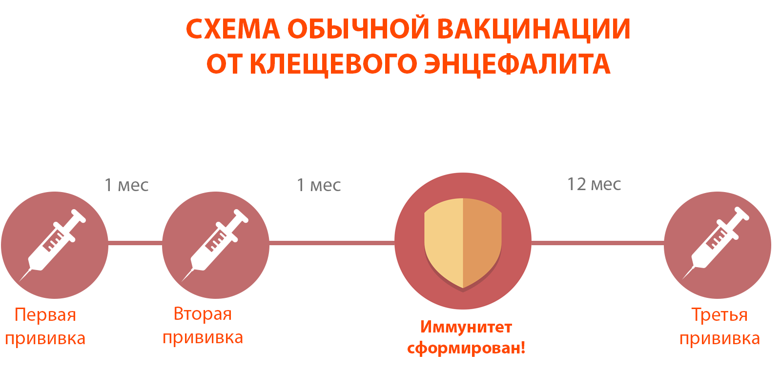 таблица вакцинации.png