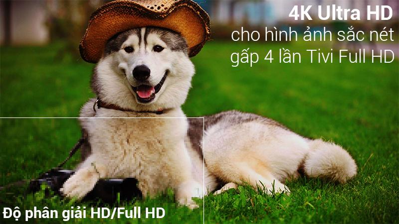 Độ phân giải 4K sắc nét trên Smart Tivi LG 4K 43 inch 43UK6340PTF