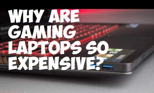 Why are Laptops so Expensive