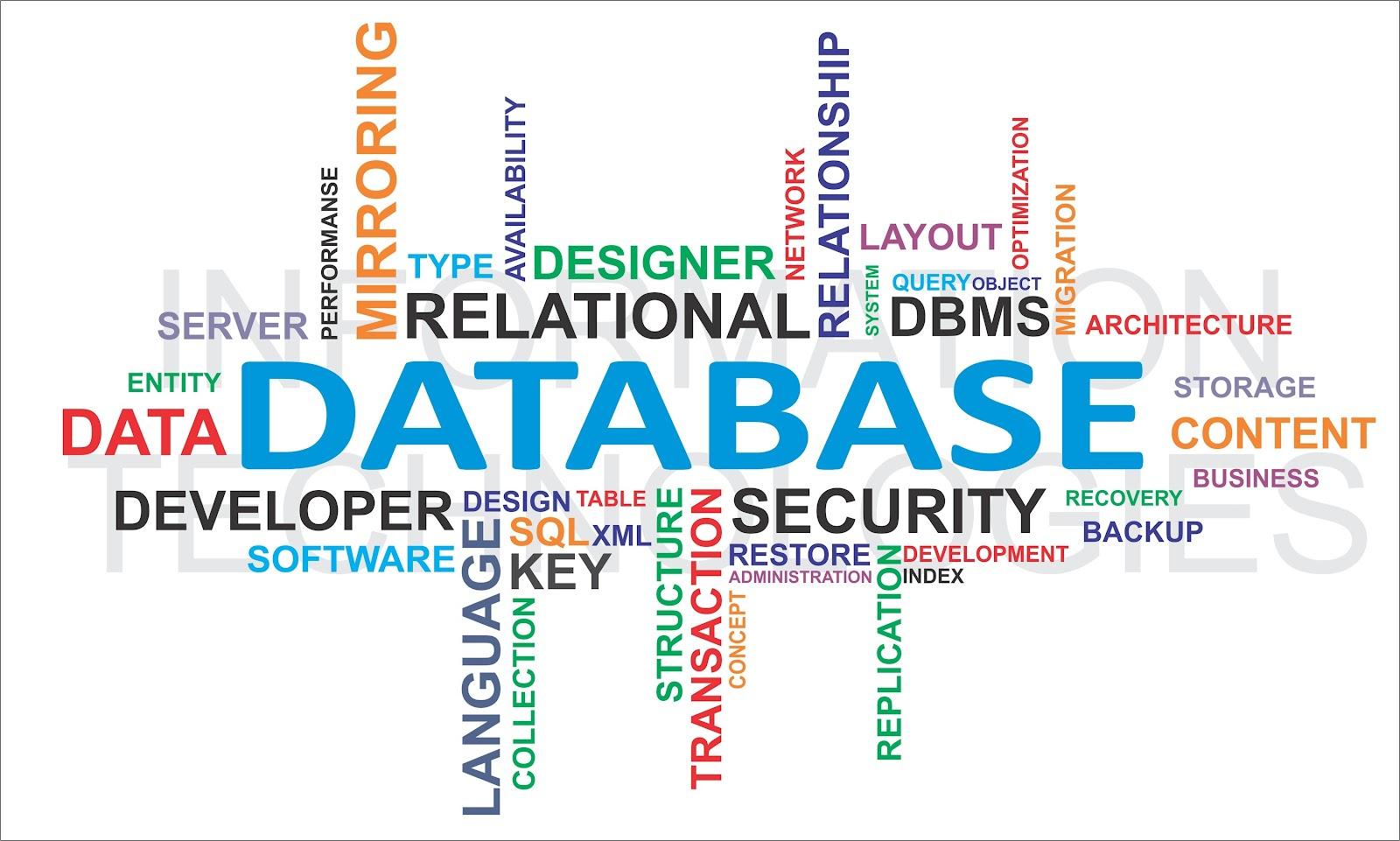 Nhà cung cấp dịch vụ sms có thể cung cấp data