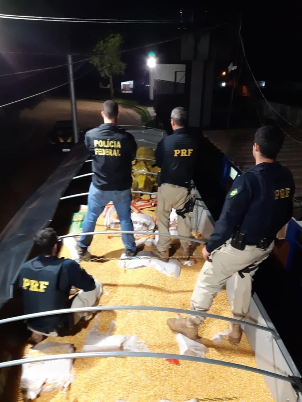 Carregamento de 28 toneladas de maconha estava escondido em meio a carga de milho em grão — Foto: PRF/Divulgação