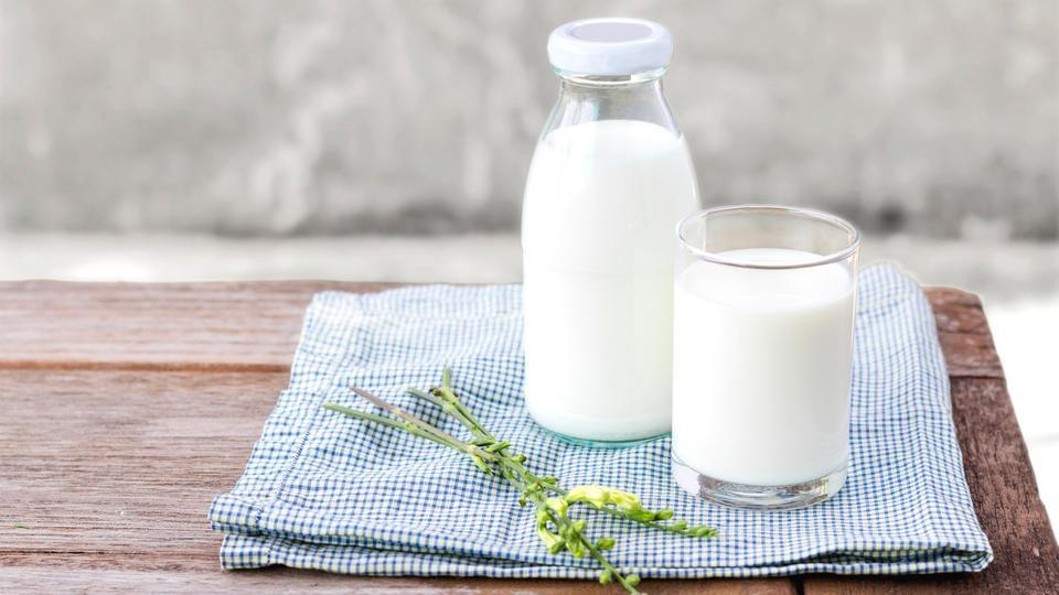 Image result for الحليب والهضم
