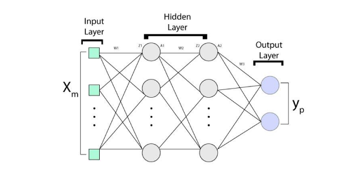 A systematic view of the architecture of the neural network consists of an input layer, a hidden layer, and an output layer.