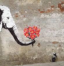 elefant.jpeg