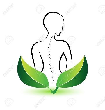 http://previews.123rf.com/images/glopphy/glopphy1308/glopphy130800020/21655547-Human-Spine-icon-illustration-vector-Stock-Vector-spine-massage-spinal.jpg