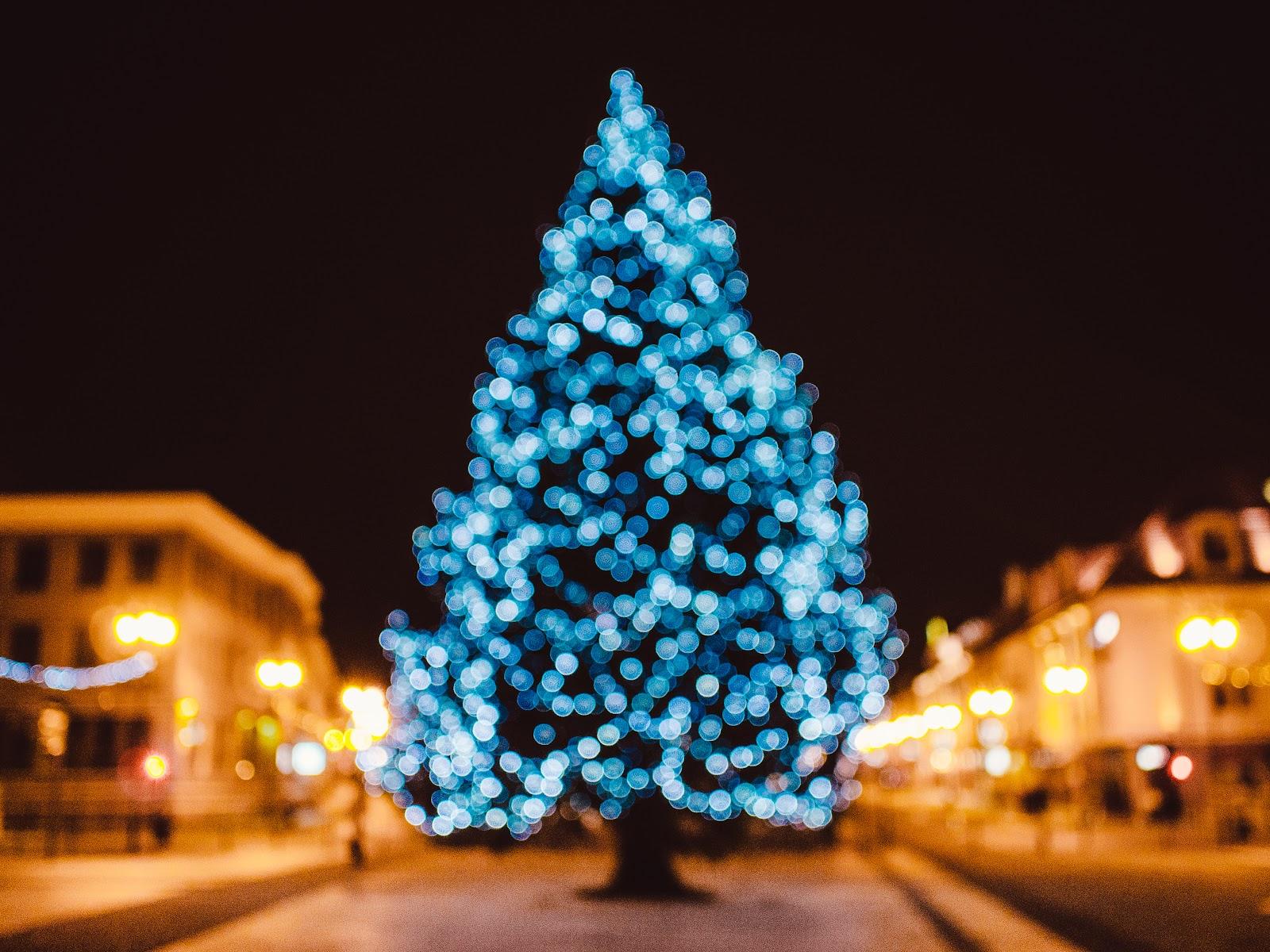... christmas, christmas tree