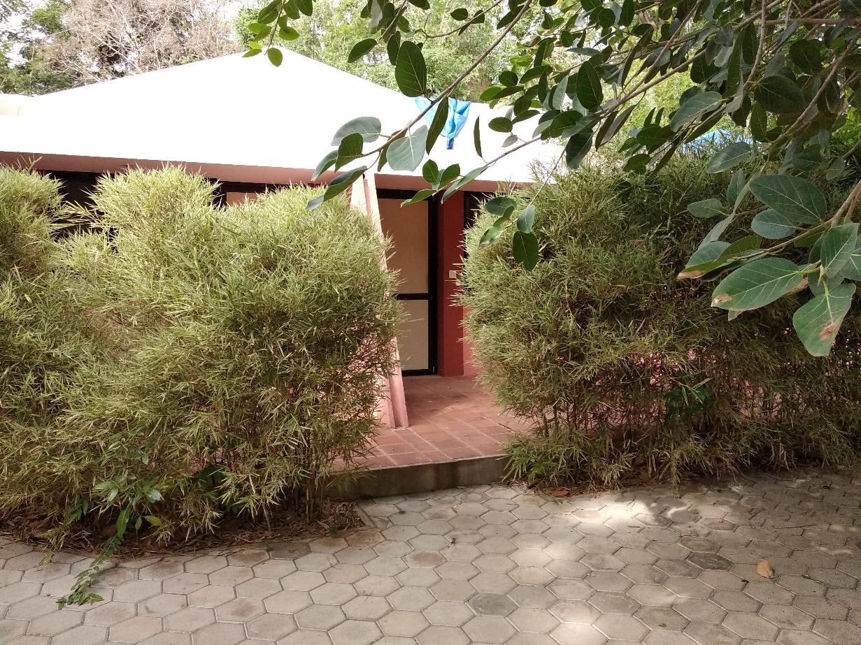 Fasad single-based villa ini ditutupi oleh berbagai rerumputan berukuran tinggi