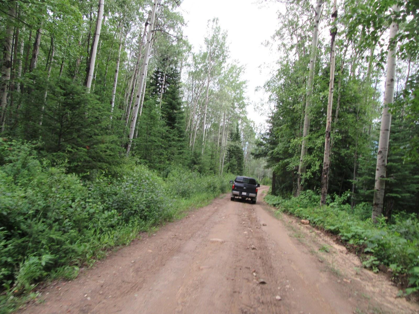 Cycling McBride Peak - dirt road with car
