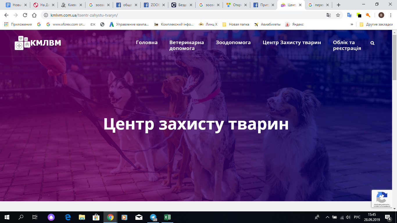 Скрин сайта центра защиты животных.