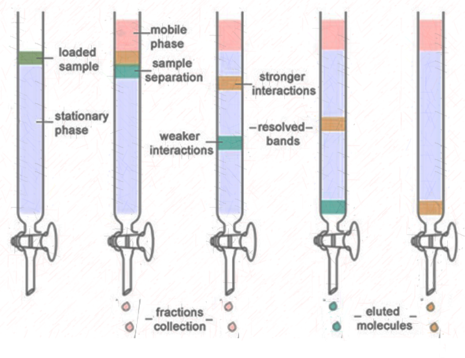 Column Chromatography - Principle, procedure, Applications