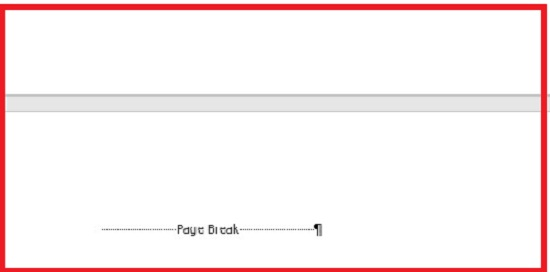 This is page break in a document