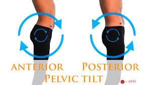 Image result for posterior pelvic tilting