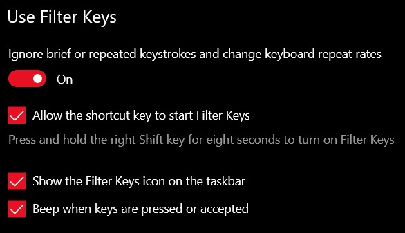 click on the toggle switch under Ignore brief or repeated keystrokes and change keyboard repeat rates to enable the Filter Keys feature