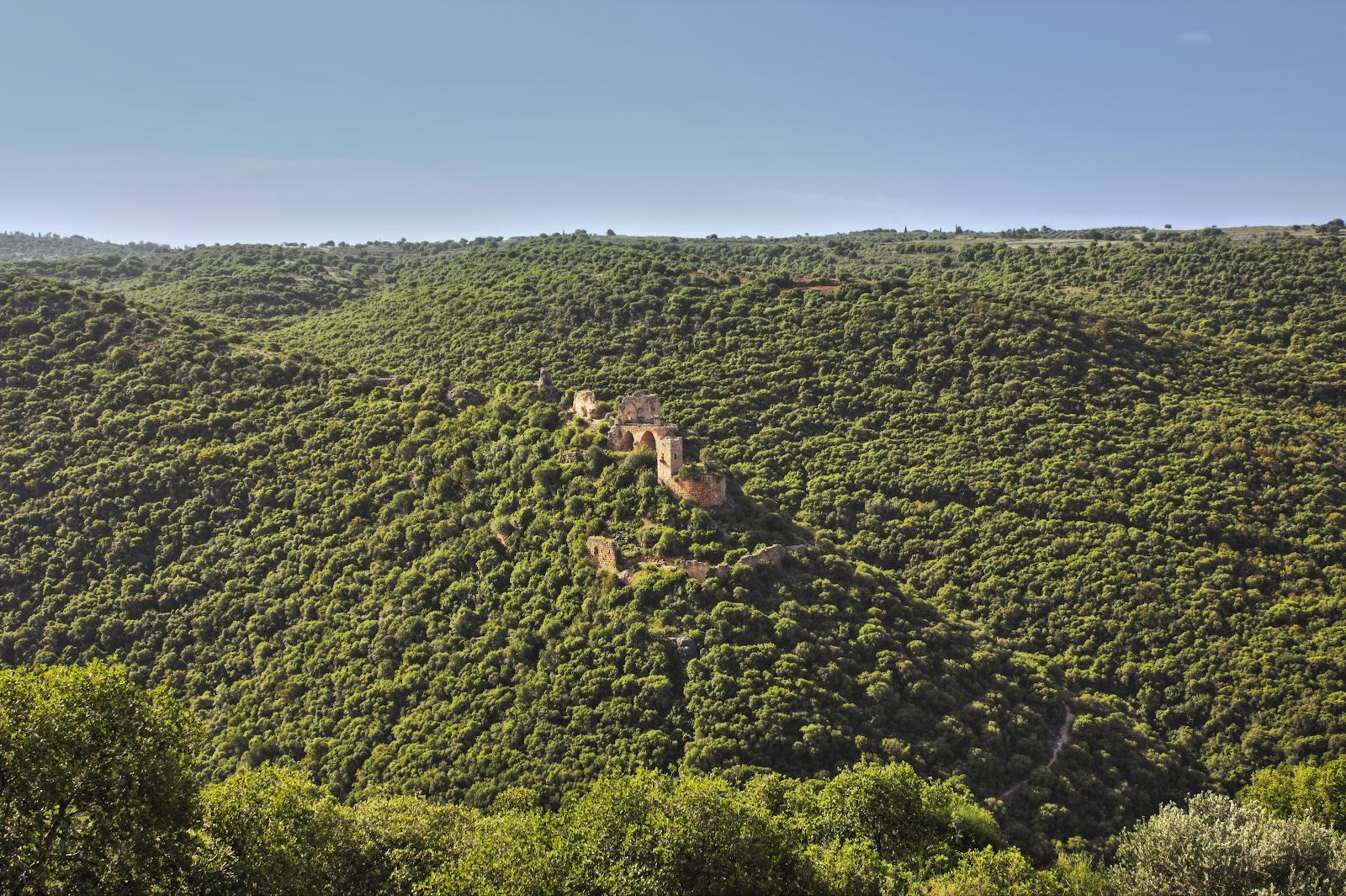 Bạn có biết quê hương của Chúa Giê-su ở Ga-li-lê đã (và hiện tại) là một ốc đảo xum xuê và xanh tươi?