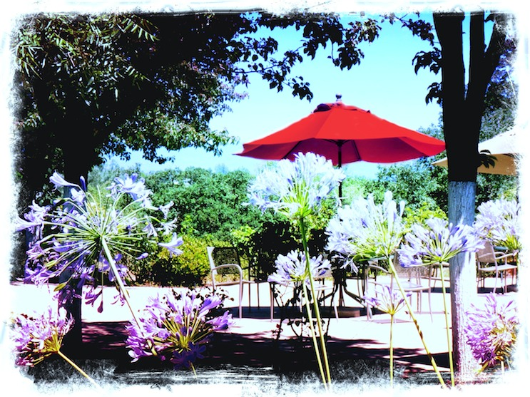 Patio Scene Red.jpg