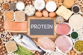 protein with fish, meats, eggs, beans, cheese, beans