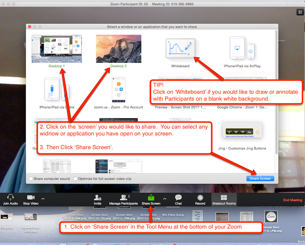 Share screen dialogue showing various different screen sharing options.