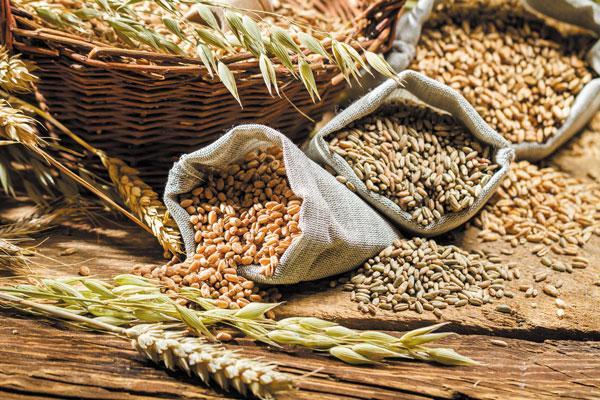 uống ngũ cốc có tăng cân không
