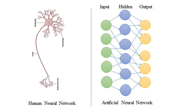 Speech Recognition using Artificial Neural Network (ANN