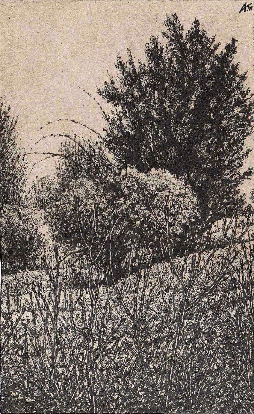 THE LATOR CREEK AREA IN THE LOWLANDS I - Miniatura, MMXII - Ink on carton - 5,51 X 3,54 in.jpg
