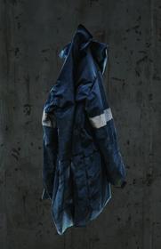 Bluejacketnormal.png