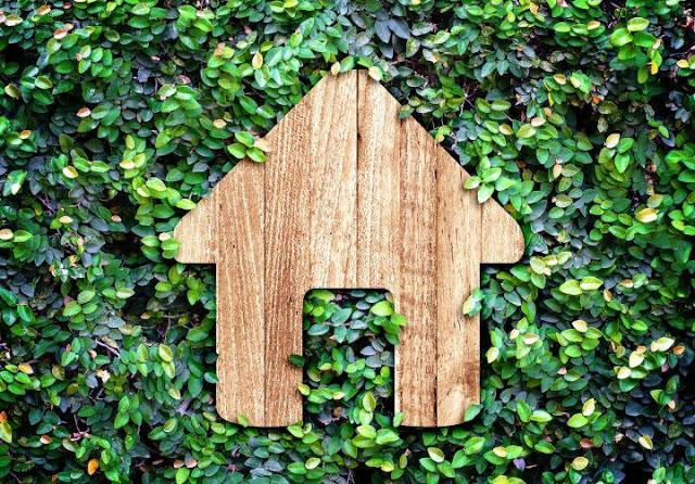 Leading an eco-friendly life in a busy home.