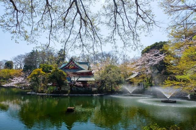 武蔵野市の成人式なら夢きらら
