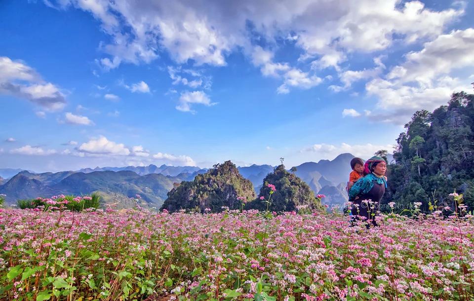 Tháng 11 - tam giác mạch nhuộm hồng xứ Hà Giang - ảnh 10