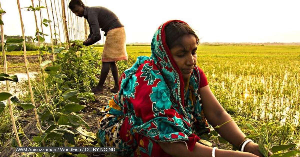 UN Food Systems Summit moves ahead as some express skepticism
