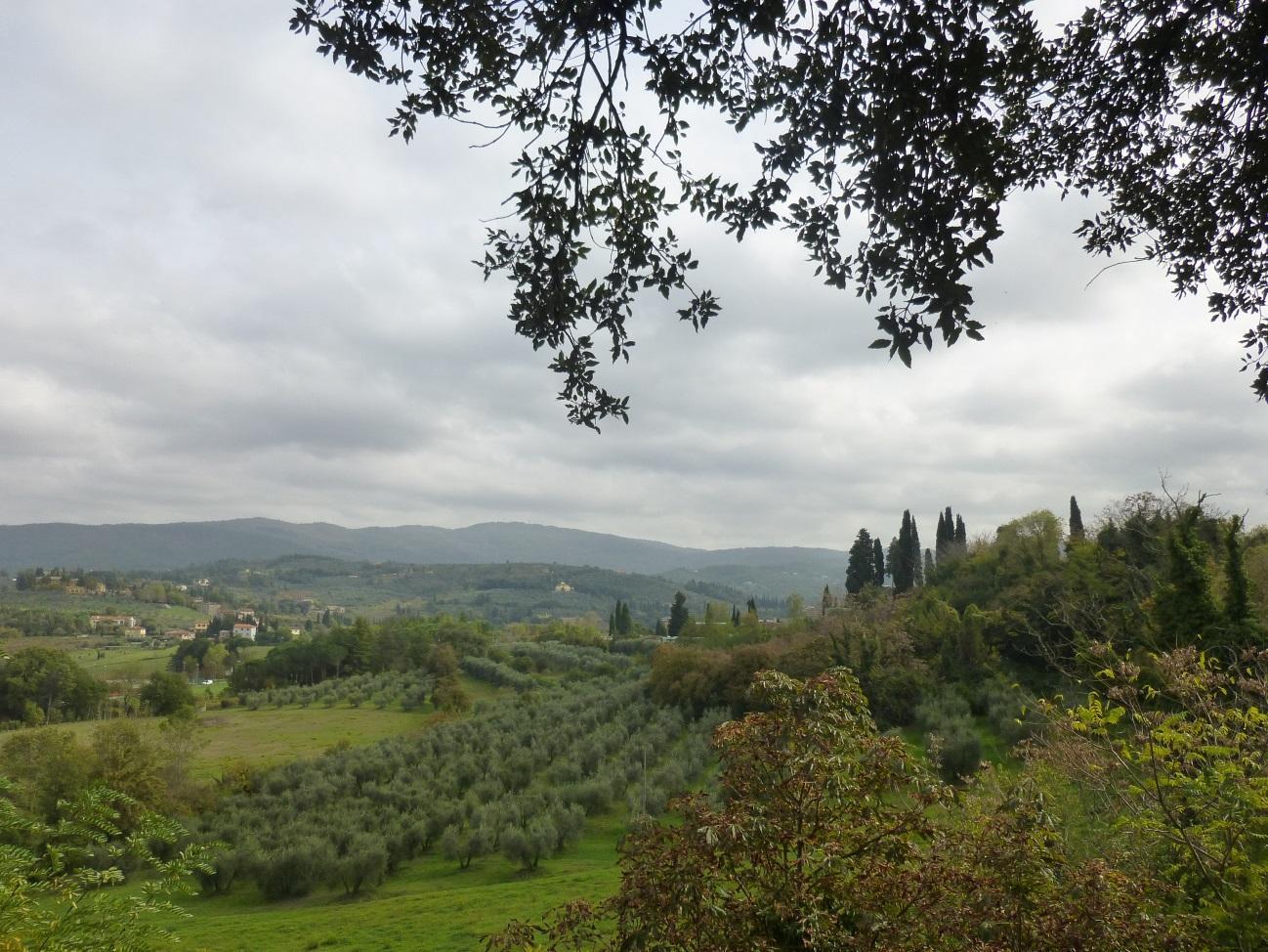 C:\Users\Gonzalo\Desktop\Documentos\Fotografías\La Toscana\103_PANA\103_PANA\P1030233.JPG