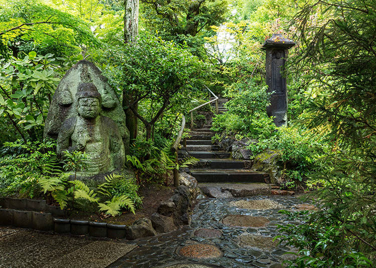 Forget about daily life in this authentic Japanese garden and enjoy walking in tranquility