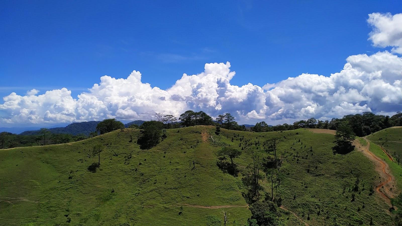 Nên đi trekking Tà Năng mùa nào? Câu trả lời là mùa cỏ xanh